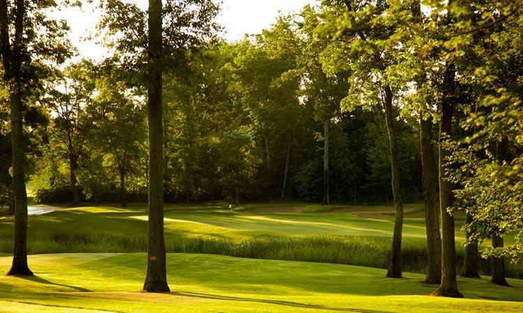 craguns-golf3