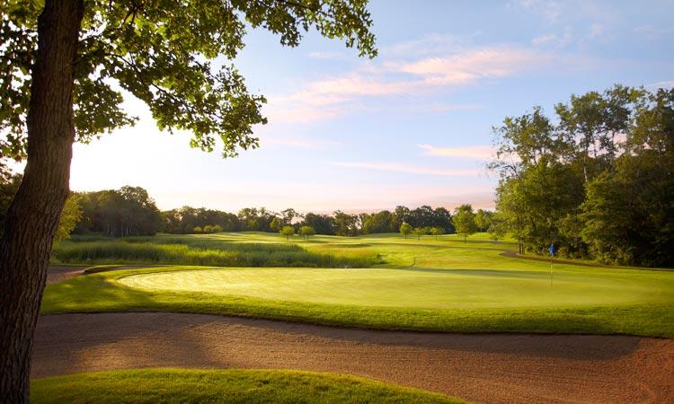 craguns-golf5